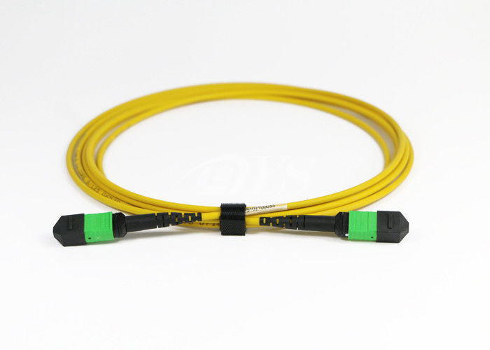 চীন 24 Core MPO / MTP 3.0mm 3M Cable Optical Fiber Patch Cord সরবরাহকারী